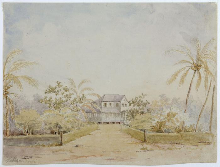 Tropenmuseum_Royal_Tropical_Institute_Objectnumber_3348-6_Plantagehuis_met_oprijlaan_en_tuin-2