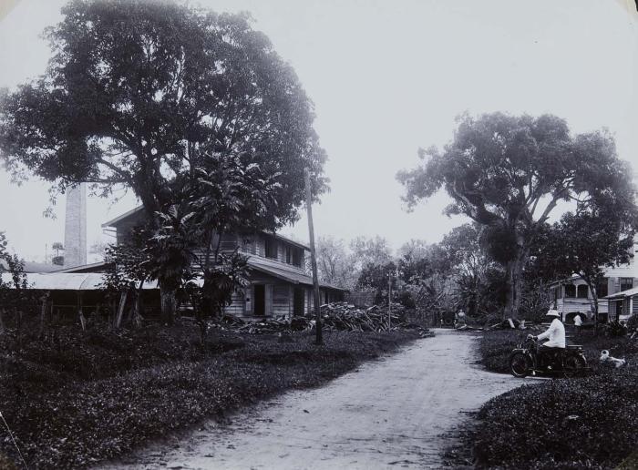 Tropenmuseum_Royal_Tropical_Institute_Objectnumber_60006263_Plantage_Ma_Retraite